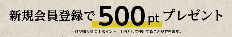 500ポイントバナー