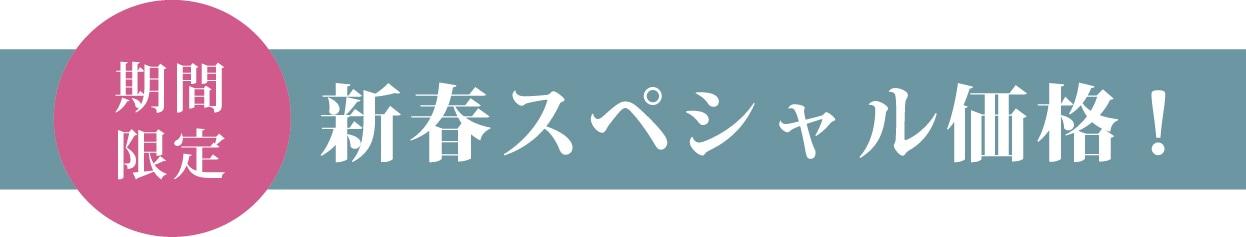 新春スペシャル価格!