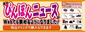 ぴんぽんニュース2019秋