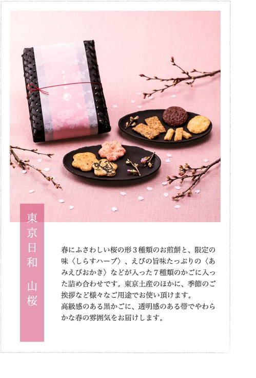 東京日和 山桜