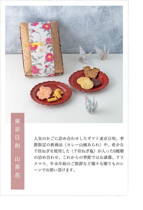 東京日和山茶花