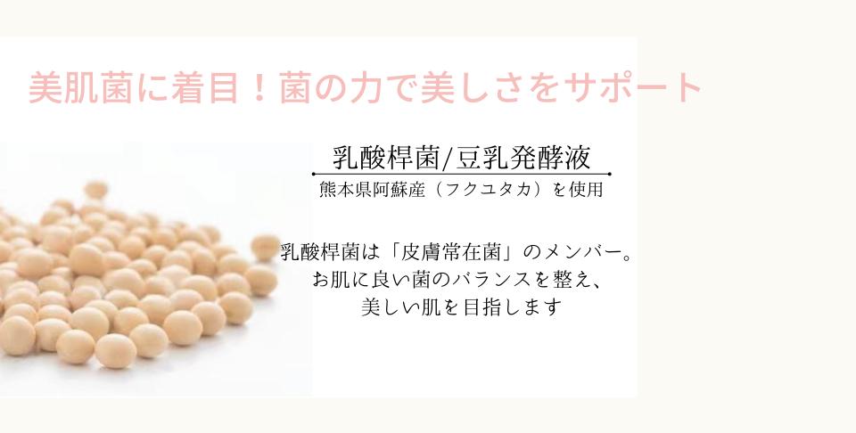 乳酸桿菌豆乳発酵液配合