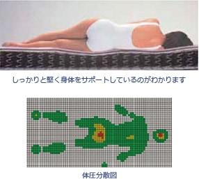 しっかりと堅く身体をサポートしているのがわかります 体圧分散図
