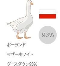 ポーランドマザーホワイトグースダウン93%