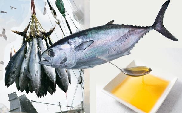 魚油DHA・EPA