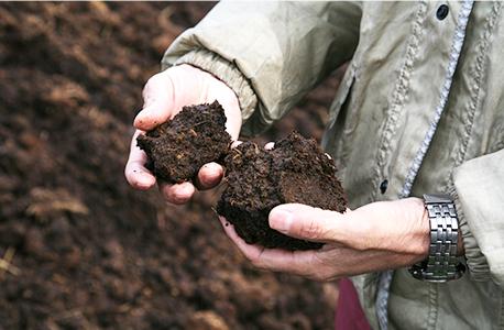 堆肥を手で触って確かめている写真