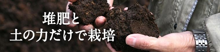 堆肥と土の力だけで栽培イメージ