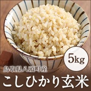 鳥取県田中農場のこしひかり玄米