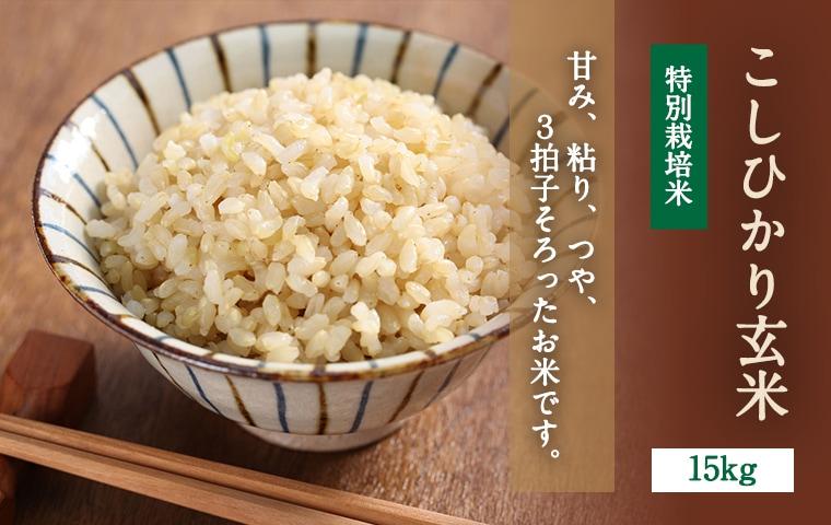 こしひかり玄米15kgメインイメージ