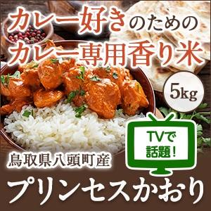 プリンセスかおり5kg【カレー・炒飯・パエリアがプロも認める味になる香り米】