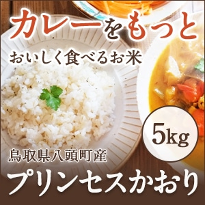2019令和元年産 新米プリンセスかおり5kg【カレー・炒飯・パエリアがプロも認める味になる香り米】