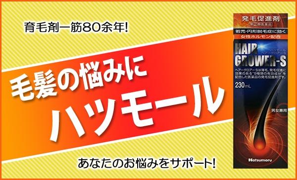 【指定第2類医薬品】ハツモール・ヘアーグロアーS 230mL