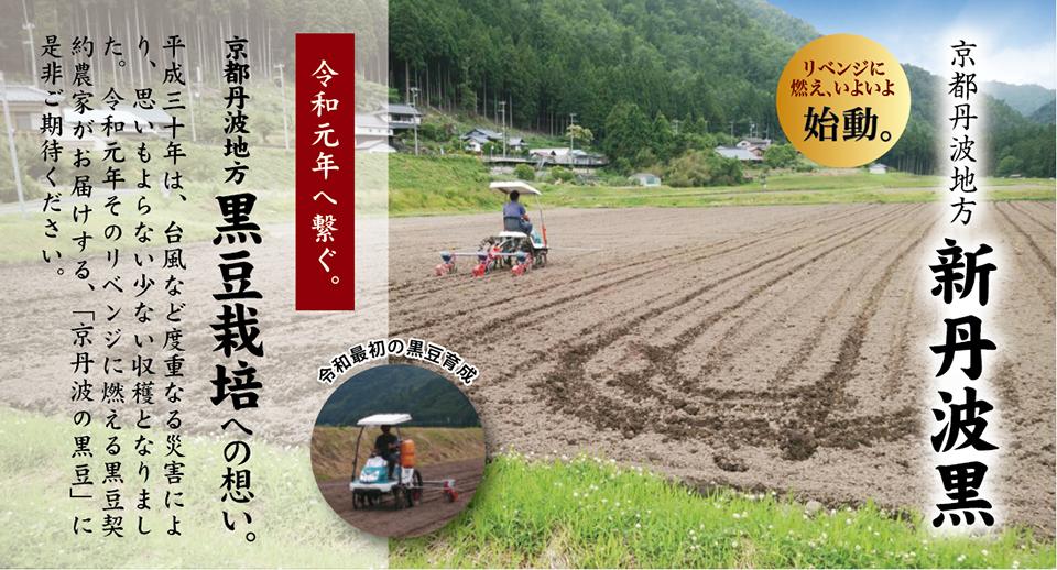 京の黒豆 京丹波産