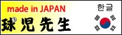 球児先生 韓国サイト