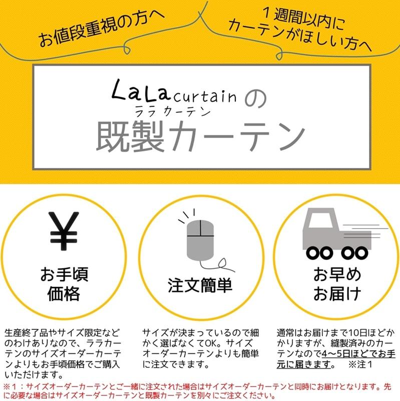 kisei_info