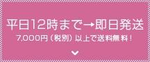 平日12時まで→即日発送