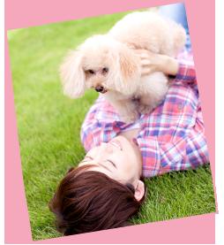 犬と遊ぶイメージ