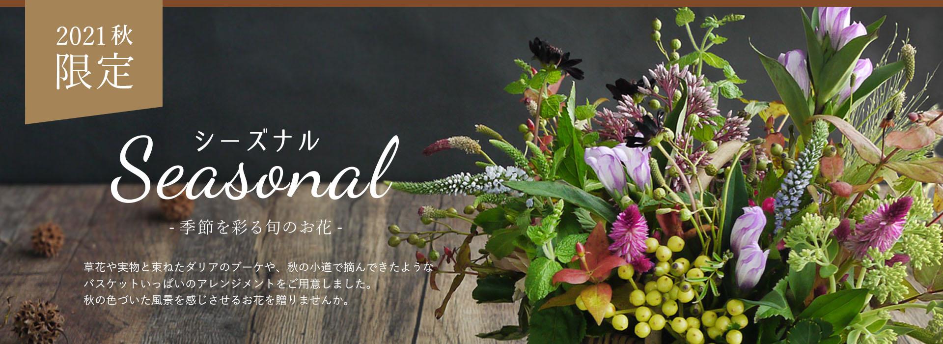 シーズナル,季節,秋,ダリア