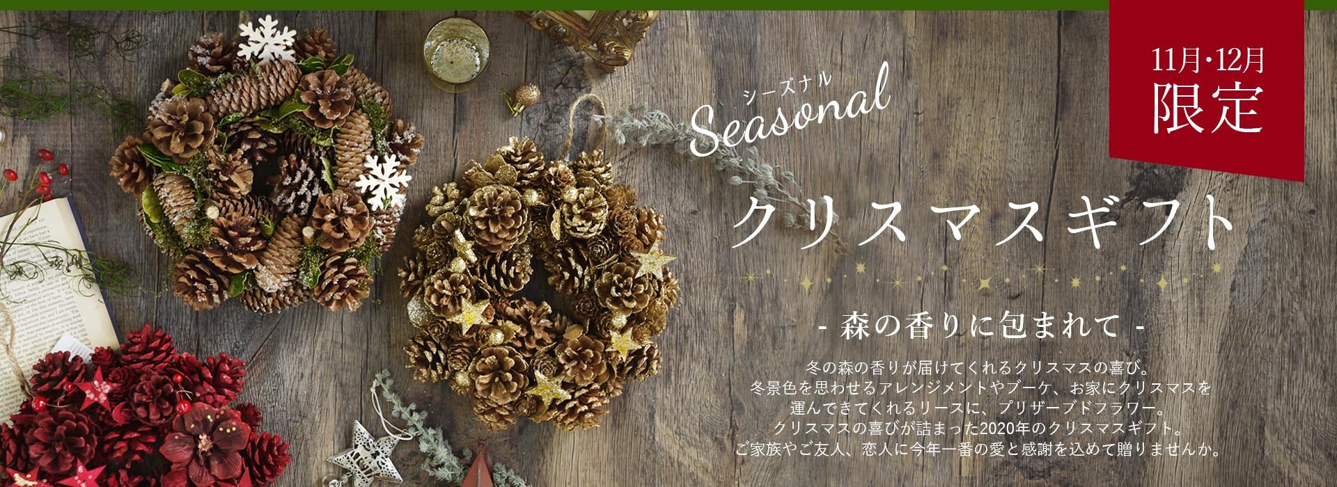 シーズナル, 季節のお花, クリスマス