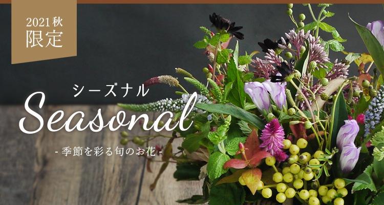 季節のお花, シーズナル, 秋, ダリア