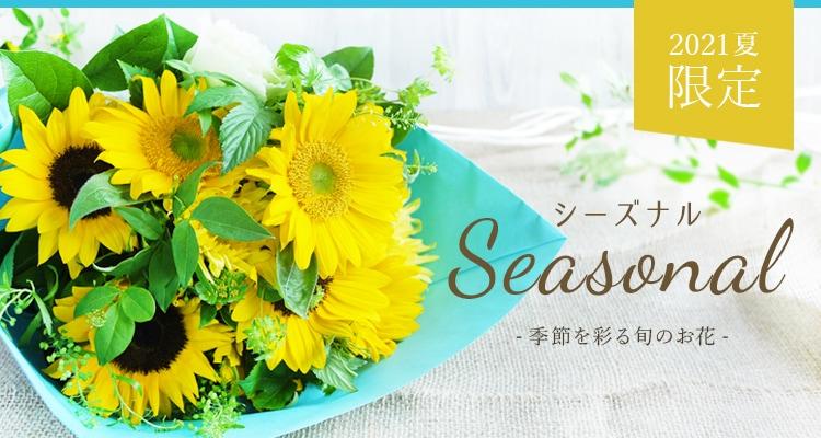 シーズナル,季節,夏,ひまわり