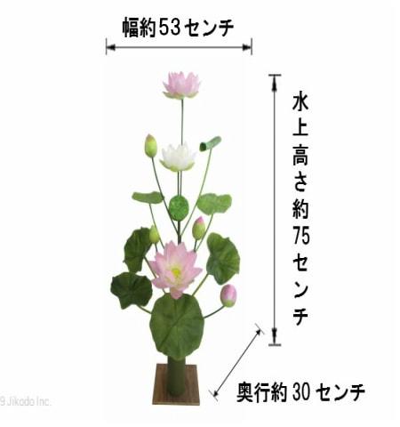 15本立て常花