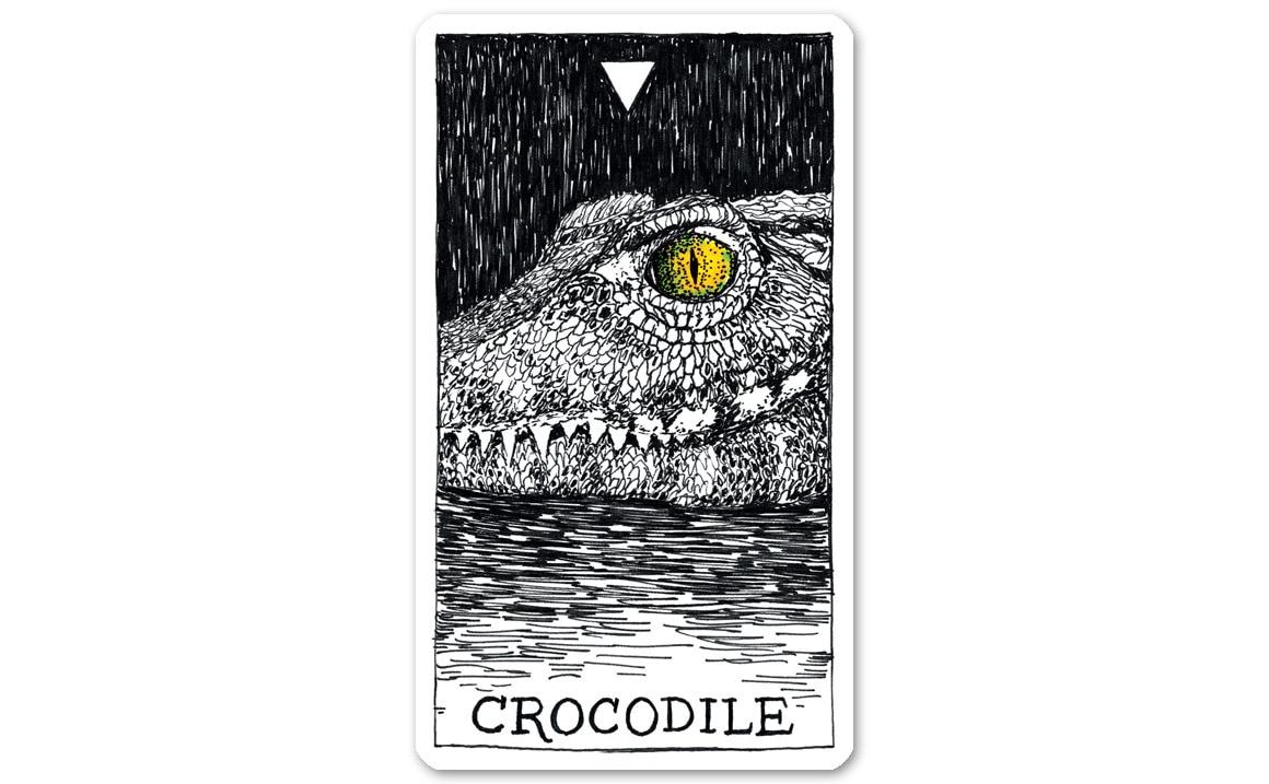 ワイルドアンノウン アニマルスピリット CROCODILE (クロコダイル)
