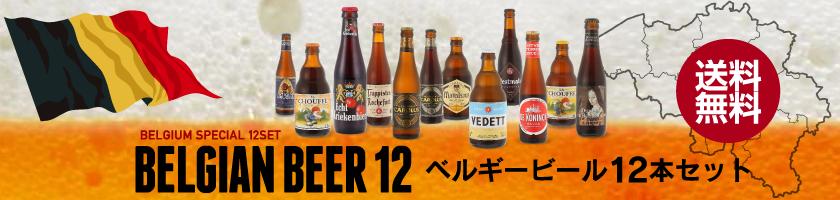 ベルギービール12本セット