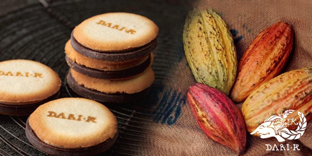 プレミアム・チョコレート