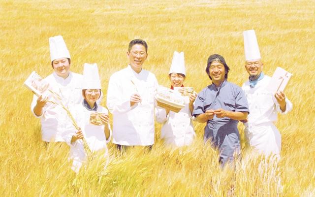 大麦畑の中の社員