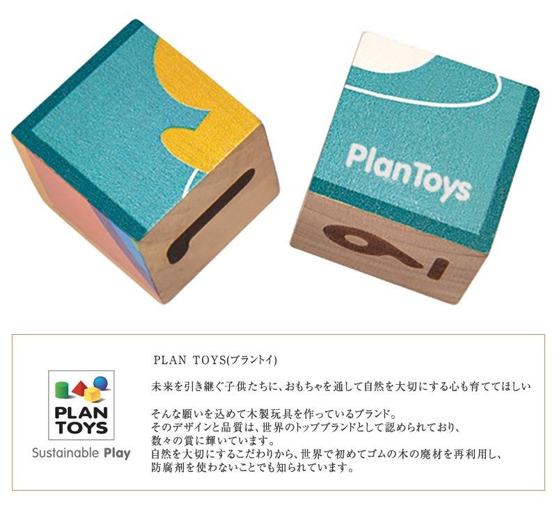 PLAN TOYS プラントイ パズルキューブ 5430