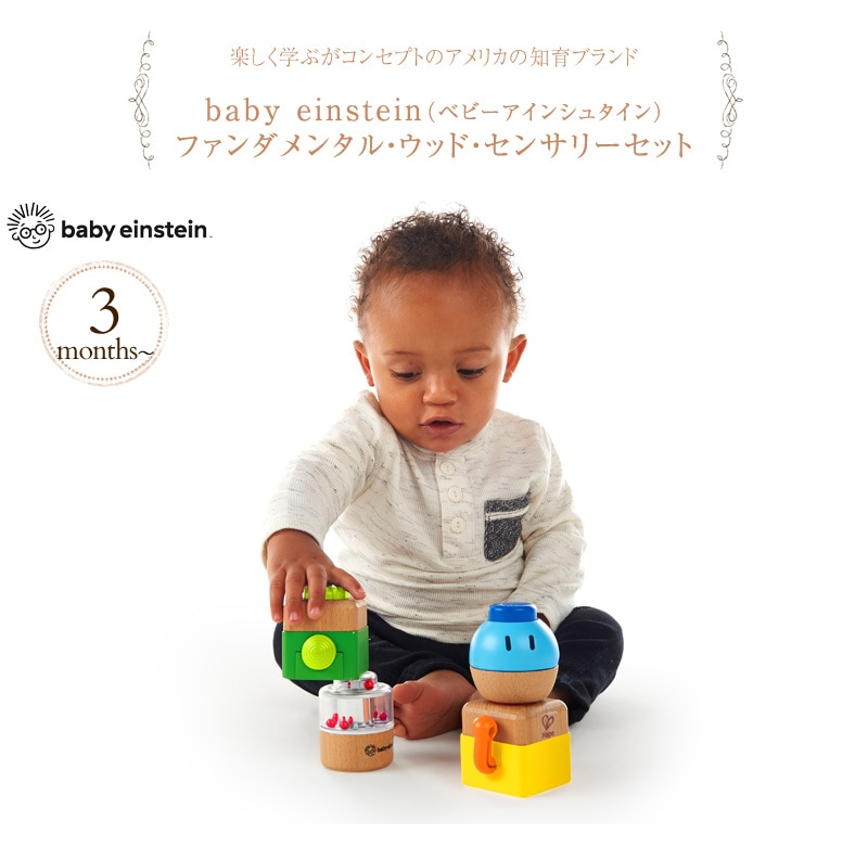 baby einstein ベビーアインシュタイン ファンダメンタル・ウッド・センサリーセット 11886