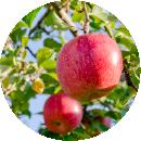 りんご果汁