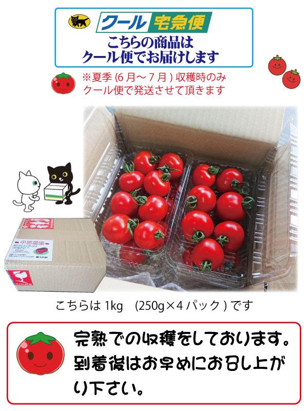 中居農園 完熟フルーツトマト