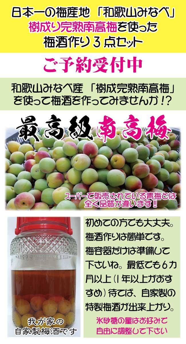 和歌山県南部産樹成完熟南高梅セット