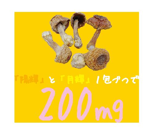 姫松茸エキス「陽揮」と「月揮」1包づつで200mg