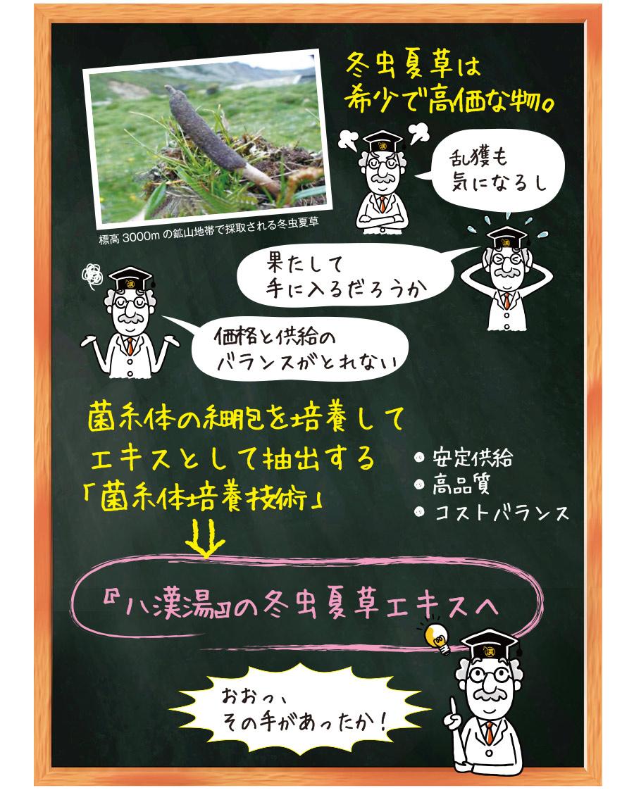 「菌糸体培養技術」→『八漢湯の冬虫夏草エキスへ』