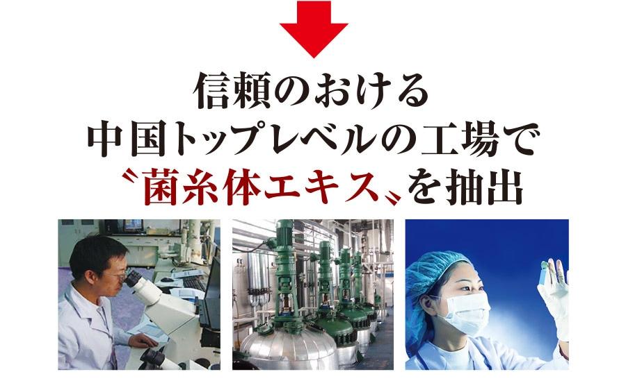"""信頼のおける中国トップレベルの工場で""""菌糸体エキス""""を抽出"""