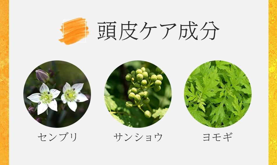柿の精_5