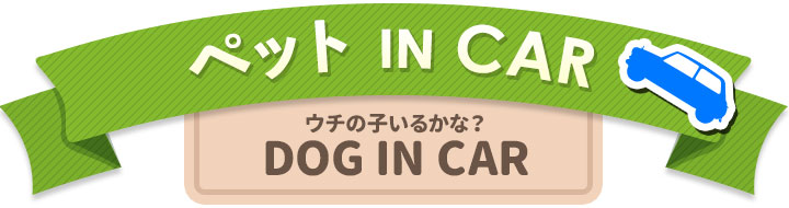 DOG IN CARシリーズ