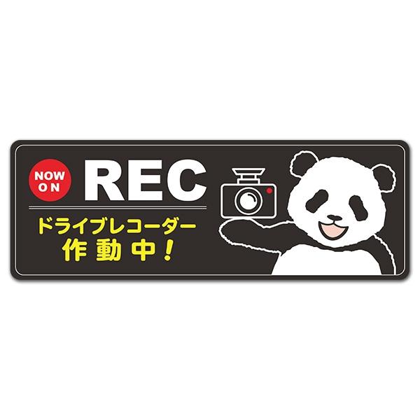 パンダ NOW ON REC【ドライブレコーダー作動中】スリム型