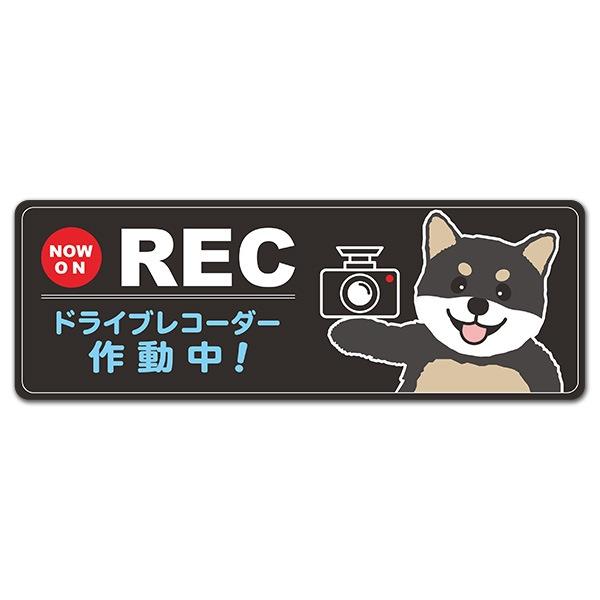 柴犬 黒柴 NOW ON REC【ドライブレコーダー作動中】スリム型