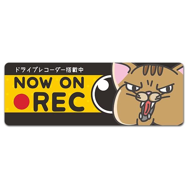 威嚇ネコ ドライブレコーダー搭載中【NOW ON REC】スリム型