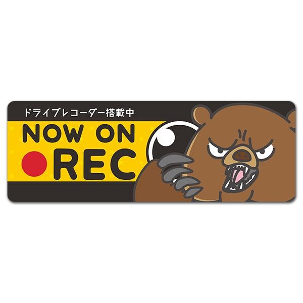 威嚇クマ ドライブレコーダー搭載中【NOW ON REC】スリム型