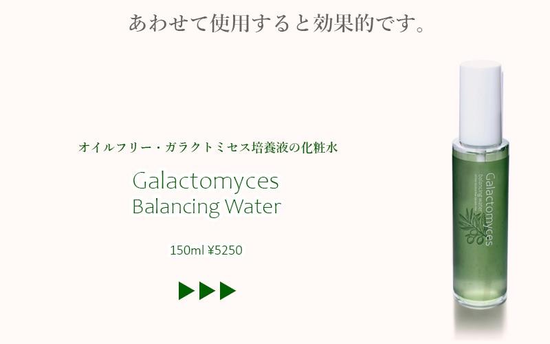 ガラクトミセス培養液の化粧水