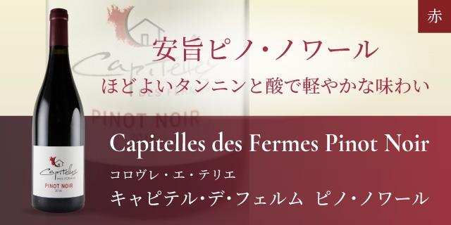 キャピテル・デ・フェルム  ピノ・ノワール