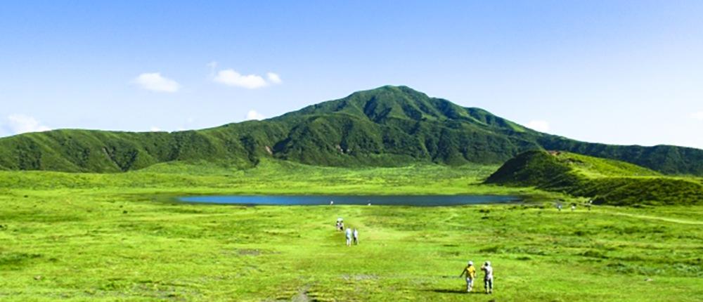 九州産小麦粉イメージ画像