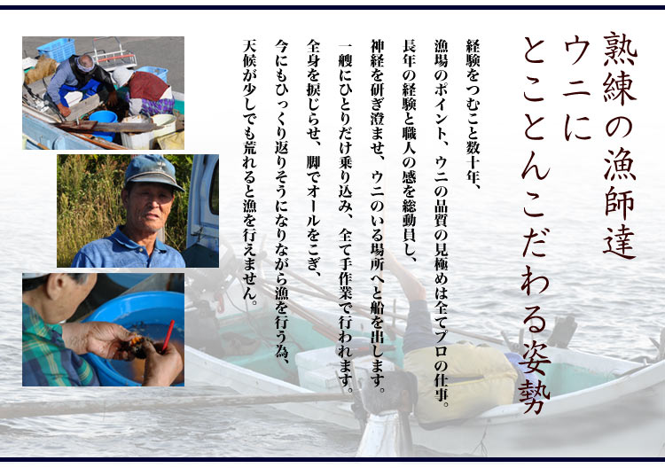 熟練の漁師達によるウニ漁