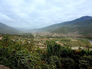 ボリビア バシリオ ティコナ農園