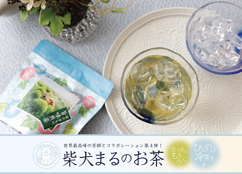 柴犬まるのお茶 世界最高峰の茶師とコラボレーション第4弾!